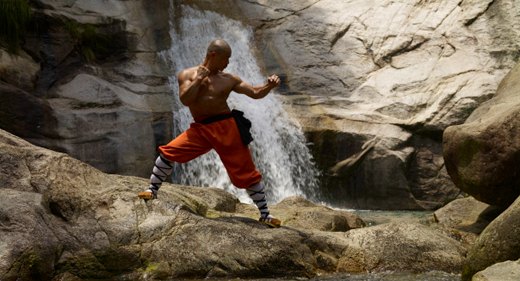 Rules-Of-The-Shaolin-Warrior-520