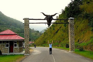 Obudu-cattle-ranch-719365