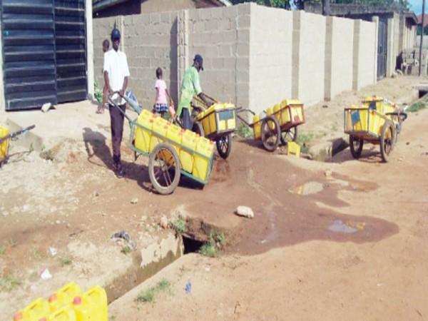 Image: Njideka Onwunyi